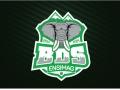 logo-bds